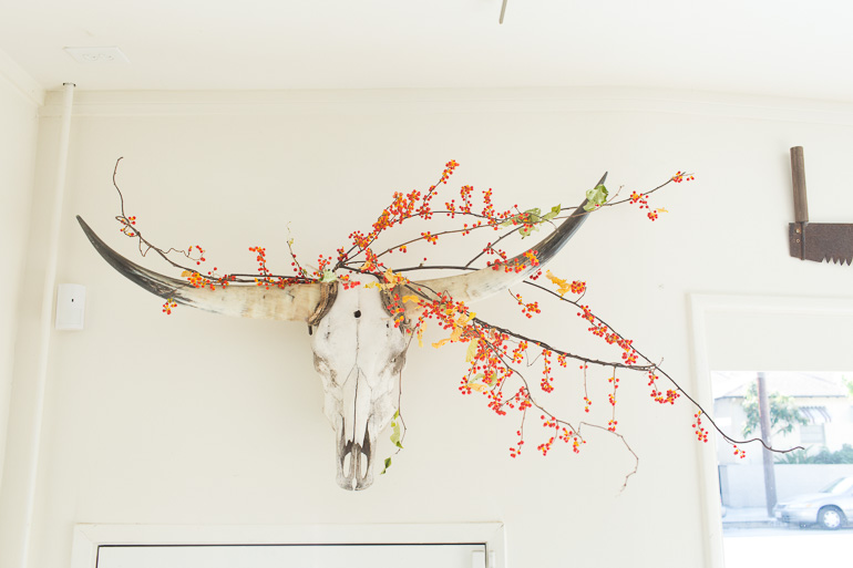steer-head-with-flowers-decor