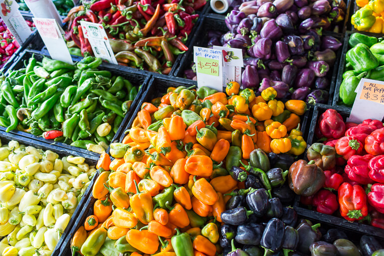 colored-peppers-heirloom-organic