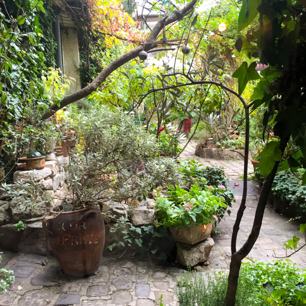 paris-garden-fall-septime