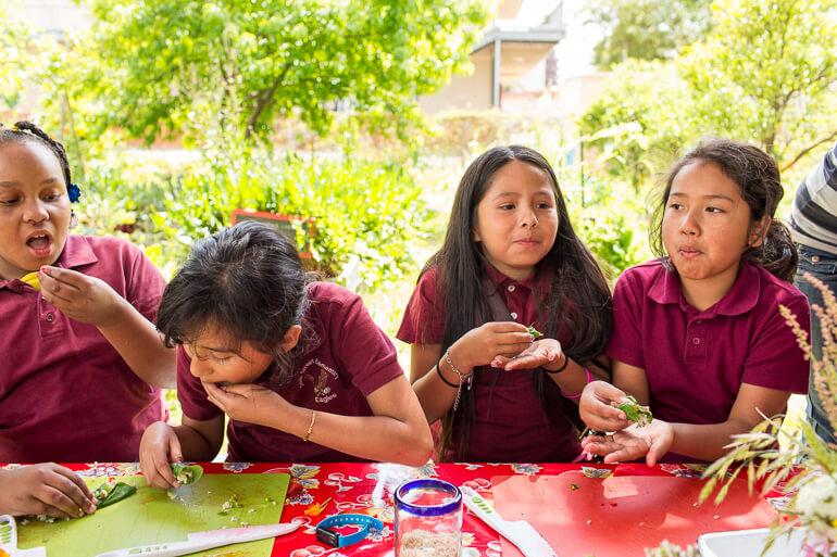 garden-classroom-cooking-class-gsf