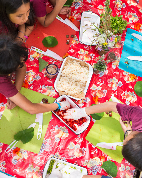 garden-school-foundation-gsf-teaching-strawberries-children
