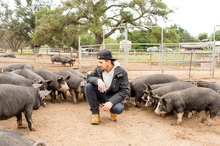 heirloom-la-pig-ranch-humane-farming-berkshire