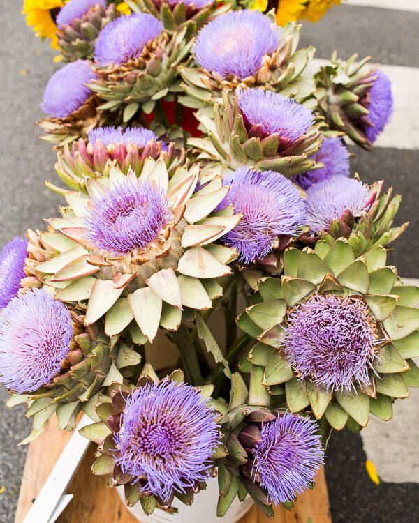 shopping-catering-heirloom-la-SMFM-artichoke-flowers