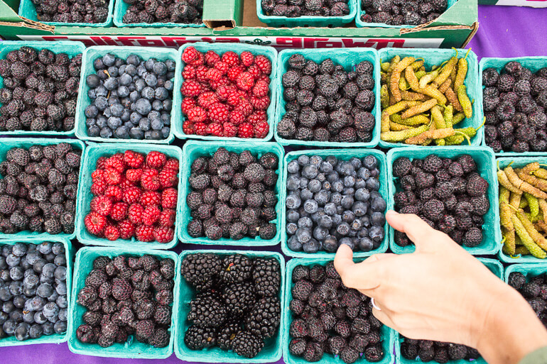 SMFM-berries-shopping-catering-local-mulberries-blueberries